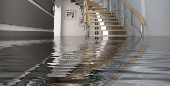 Water Damage Restoration in Homeland CA